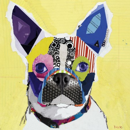 boston terrier pop dog art collage