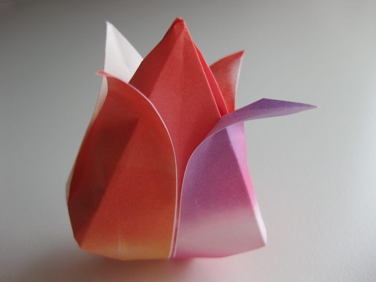 An Introduction To The Art Of Origami | 900x1200