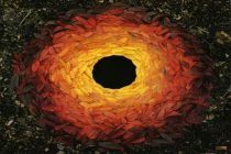Andy Goldsworthy's land art