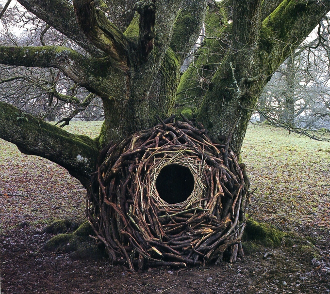 Andy Goldsworthy 5